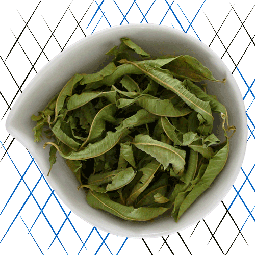 Tisane bio aux feuilles de verveine