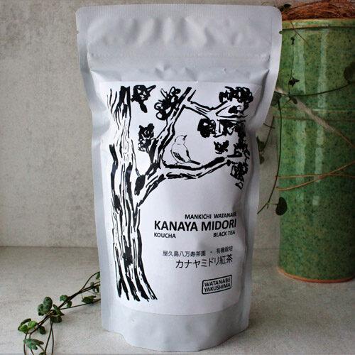thé noir japon watanabe